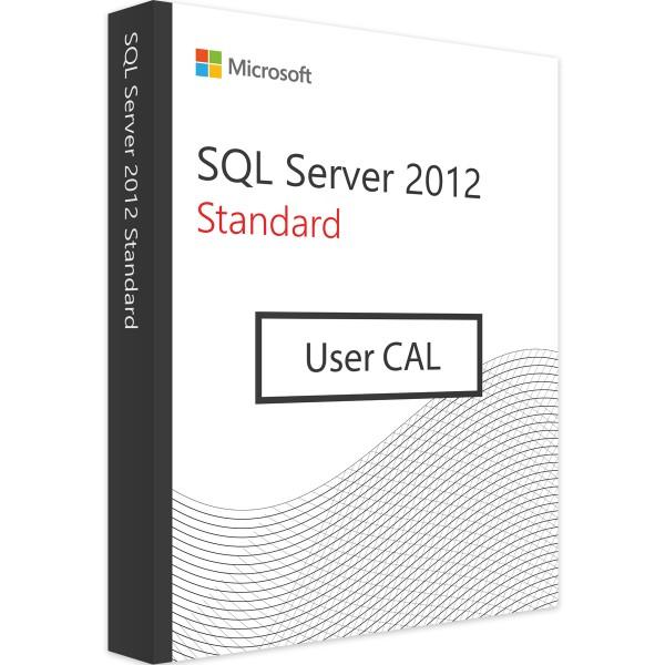 Microsoft SQL Server 2012 Standard - 1 User CAL